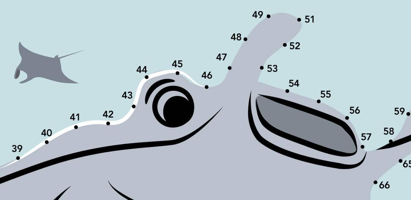 SEA Aquarium Fun Academy  Connect the Dots 1366x666